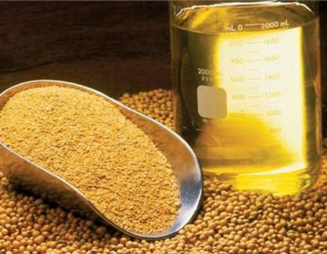ترخیص-مواد-اولیه-غذایی،-آشامیدنی،-آرایشی-و-بهداشتی-2