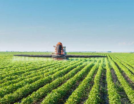 ترخیص-کالای-کشاورزی-3