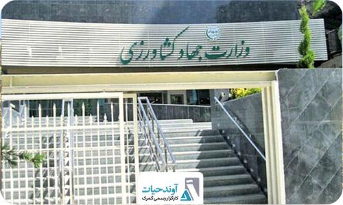 بازگشت ۴ مسئولیت تنظیم بازار به وزارت جهاد کشاورزی