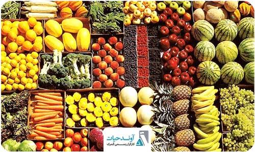 افزایش ۹ درصدی صادرات محصولات کشاورزی