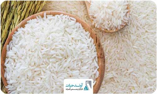 شناورهای برنج رسید/ چانهزنیها شروع شد!